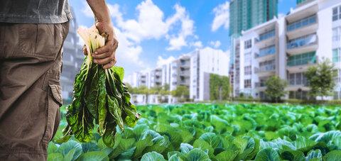 کشاورزی_شهری