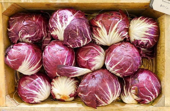 خواص شگفت انگیز گیاه «کاسنی قرمز»