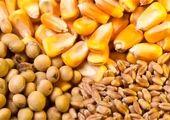 مصرف کدام خوراکی ها در سبد خانوار افزایش داشته است؟