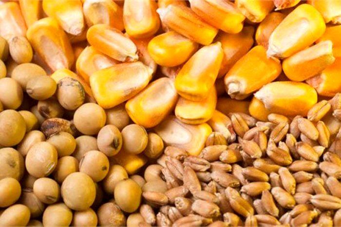 قیمت روز نهاده های دامی و محصولات کشاورزی (۱۲مهر) + جدول