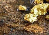 تدوین طرح جامع طلا با تمرکز بر همه بخشهای زنجیره