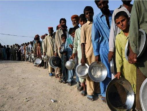 گرسنگی چه بلایی بر سر دنیا آورده است؟