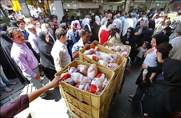 نگرانی از کاهش قیمت مرغ