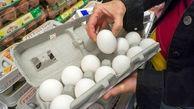 گرانی، بازار تخم مرغ را درنوردید!