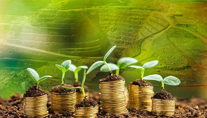 مشکل سرمایه گذاری در بخش معدن کجاست؟