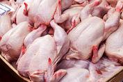 قیمت جدید مرغ به زودی اعلام می شود + جزئیات