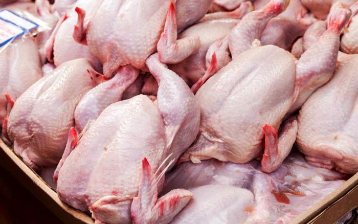 مرغ باز هم گران شد