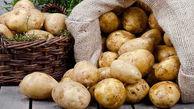 پیشنهاد صادرات سیب زمینی در قبال واردات موز
