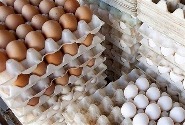 آخرین خبرها درباره قیمت تخم مرغ