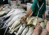 قیمت ماهی در بازار امروز (۹۹/۰۶/۱۶) + جدول