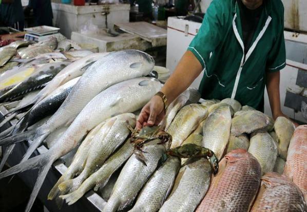 افزایش قیمت انواع ماهی در بازار امروز (۱۱ مرداد)