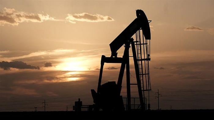 قیمت جهانی نفت امروز (۹۹/۰۸/۰۲)
