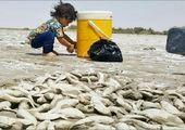 افت ۵۰ درصدی آورد آب در پشت سدهای خوزستان