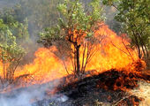 آتش سوزی چند سوله یک انبار باربری در خیابان شوش + فیلم