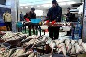 قیمت انواع ماهی در بازار (۹۹/۰۴/۱۴) + جدول