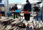 قیمت انواع ماهی دربازار امروز (۹۹/۱۰/۰۶) + جدول