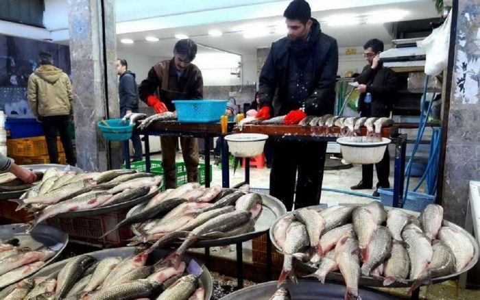 قیمت ماهی در بازار امروز (۹۹/۱۱/۱۱) + جدول