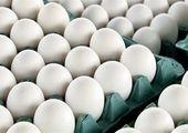 صادرات تخممرغ آزاد می شود