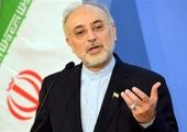 فوری/ رافائل گروسی وارد تهران شد
