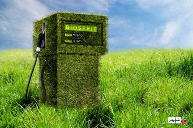 در خانه بنزین و گازوئیل تولید کنید!