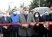 این خودروها نفس تهران را بند آوردند!