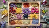داروی گیاهی در درمان کرونا موثر است؟
