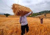 جزئیات واگذاری کشاورزکارت + فیلم