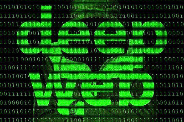 در اعماق سیاه اینترنت چه می گذرد/ همه چیز درباره دیپ وب