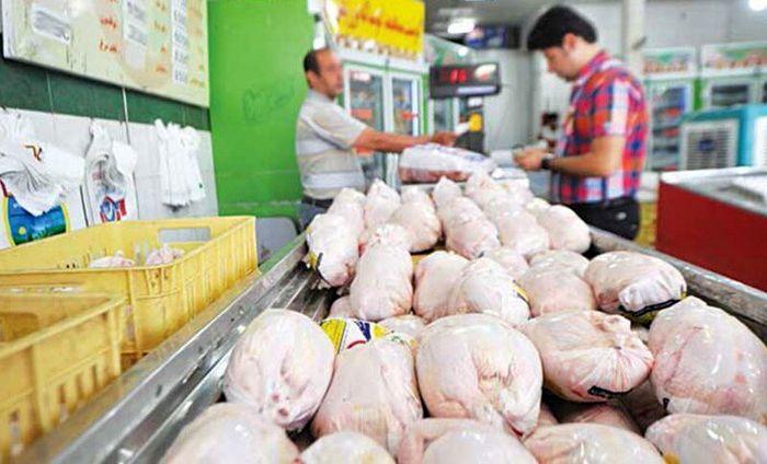قول وزیر کشاورزی برای کاهش قیمت مرغ +فیلم