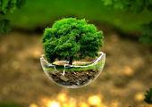نگاهی بر خطرات زیست محیطی معادن