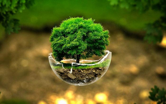 رتبه ایران در حفاظت از محیط زیست چند است؟