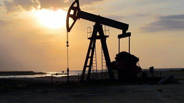 رشد قیمت نفت متوقف شد