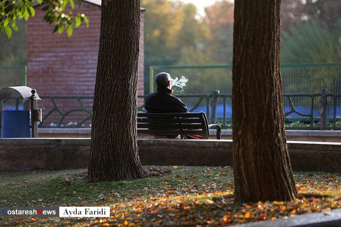 تصاویر/ سایه روشن یک پاییز کرونایی