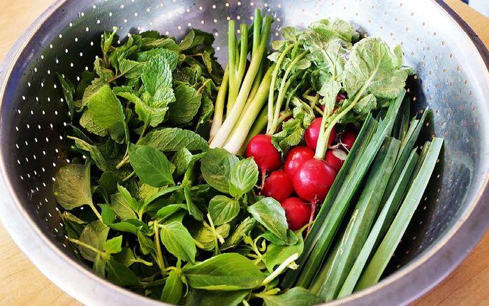 با این ترفندها سبزی های پلاسیده را تازه کنید!