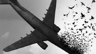 روایات تکان دهنده از حادثه هواپیمای اوکراینی+فیلم