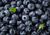 کاهش ۱۰ درصدی قیمت میوه / ارزانی در راه است
