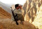 یکی از عاملان شهادت محیطبان زنجانی به دام افتاد