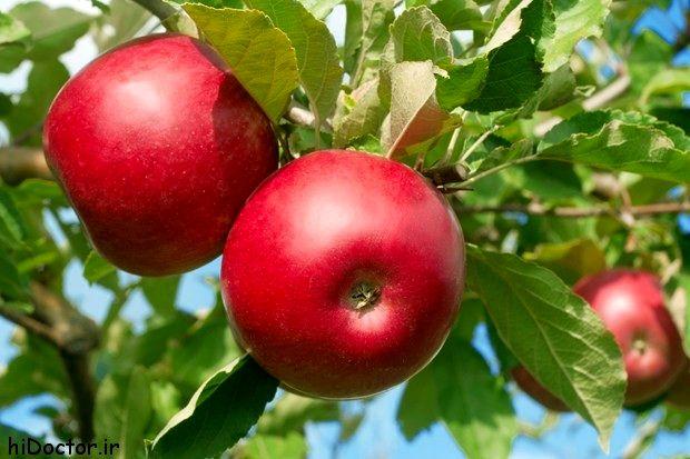 میوه ای برای سلامت دستگاه گوارش