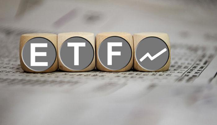 جزئیاتی از دومین ETF دولتی